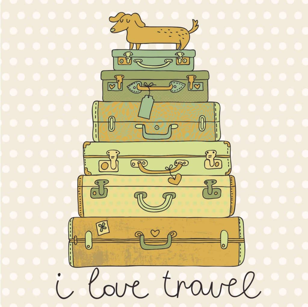 Help Settling In - Suitcases and Dog
