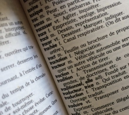 Intraduisibles - Dictionnaire traduction