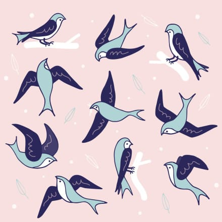 a picture of swallows