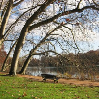 October Song - Autumn in Lyon