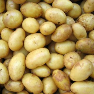 Photo of potatoes