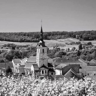 an image of the countryside of the Champagne region