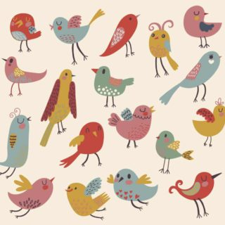 a picture of birds of all shapes and sizes