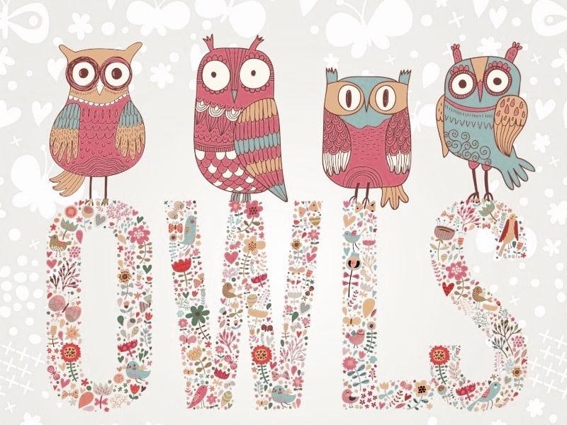owl-babylangues