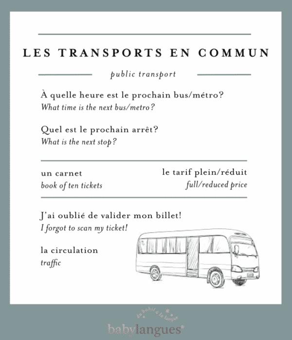 Language Toolkittransport_Template